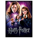 11895 - Harry Potter Foam-Backed 500 Piece Puzzle - Hermione Granger