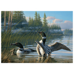 11457 - CH Common Loons - 1000 Piece Puzzle
