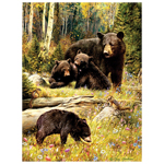 11469 - CH Bears - 500 Piece Puzzle