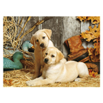 14799 - Clementoni Hunting Dogs - 1500 Pc Puzzle