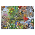 14964 - Cobble Hill Birds Of The Season 1000 Pc Puzzle